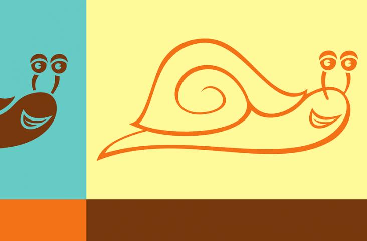 Slakken. Bron Pixabay